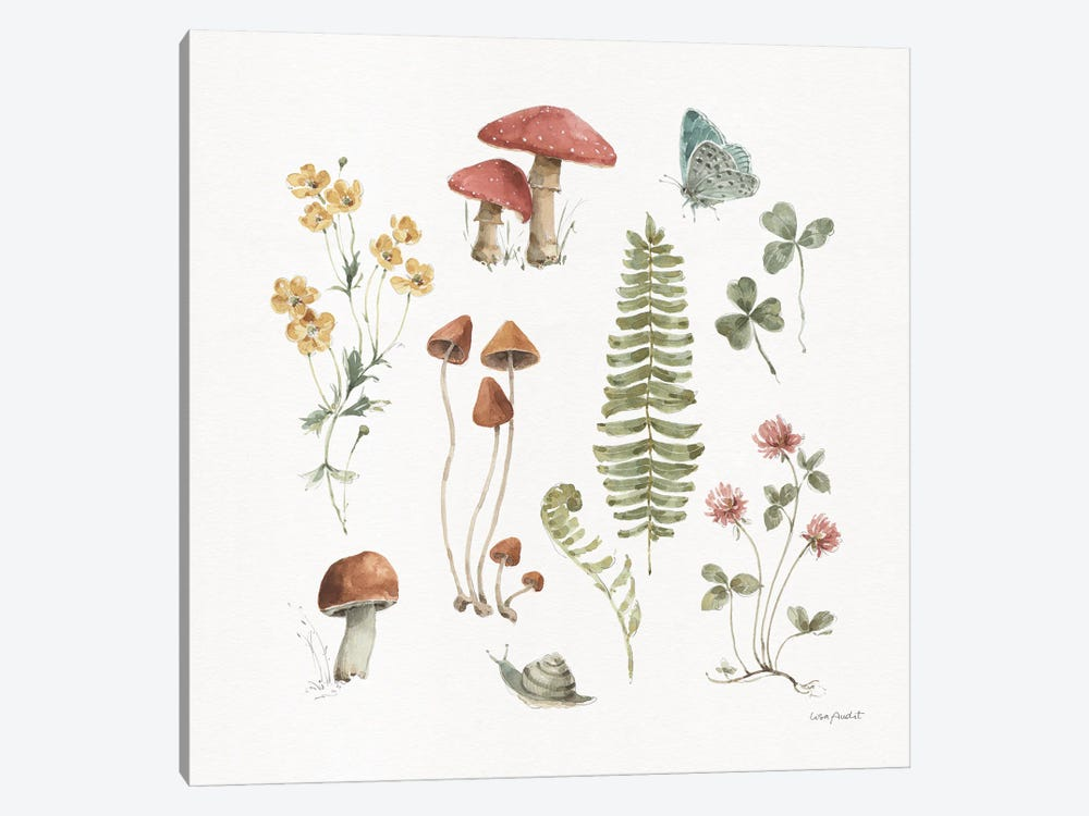 Forest Treasures III by Lisa Audit 1-piece Art Print