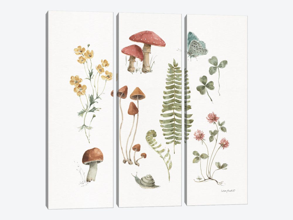 Forest Treasures III by Lisa Audit 3-piece Canvas Art Print
