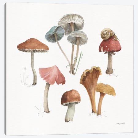 Mushroom Medley II Canvas Print #UDI422} by Lisa Audit Canvas Print