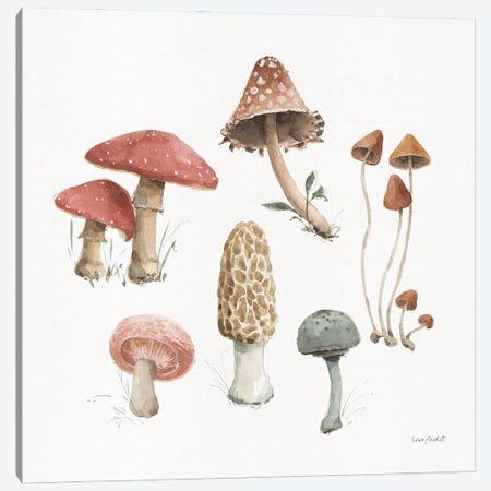 Mushroom Medley III Canvas Print #UDI423} by Lisa Audit Art Print