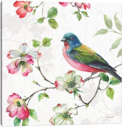 Dogwood Garden III Canvas Art Print