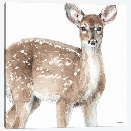 Forest Friends VI Canvas Print #UDI58} by Lisa Audit Canvas Wall Art