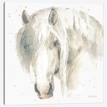 Farm Friends VI Canvas Print #UDI8} by Lisa Audit Canvas Art Print