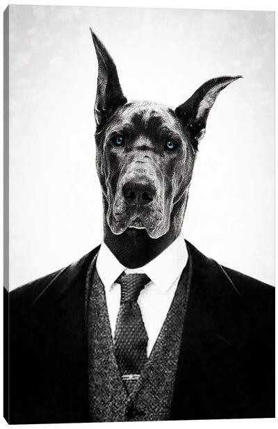 Black Dog Canvas Art Print