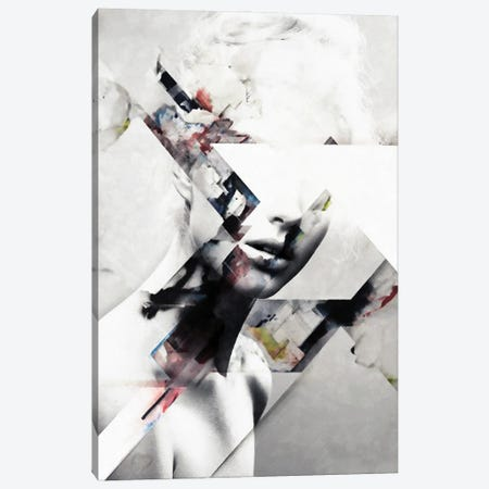 Abstract Sections Of Beauty Canvas Print #UDT4} by Underdott Art Canvas Art