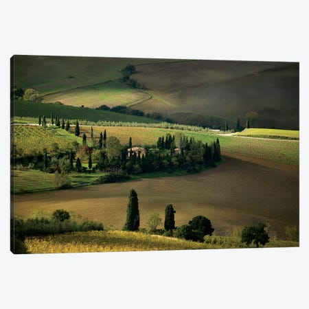 Farmland Around Montepulciano, Tuscany, Italy Canvas Print #UFF2} by David Barnes Canvas Wall Art