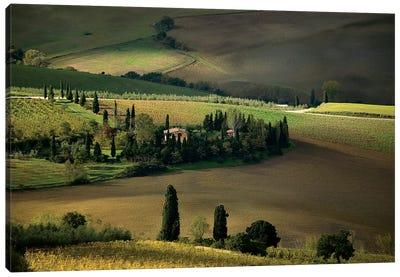 Farmland Around Montepulciano, Tuscany, Italy Canvas Art Print