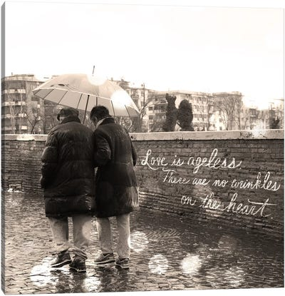 Love is Ageless Canvas Art Print