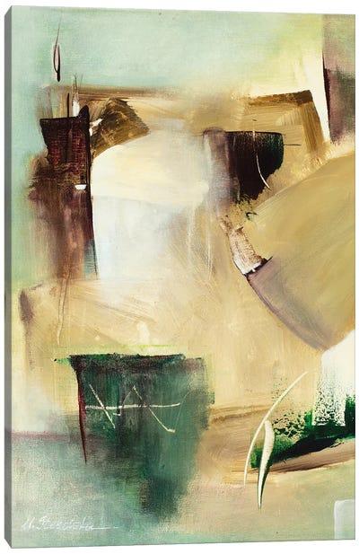 Found Serenity Canvas Art Print
