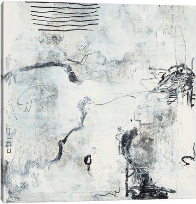 Grigio Canvas Art Print
