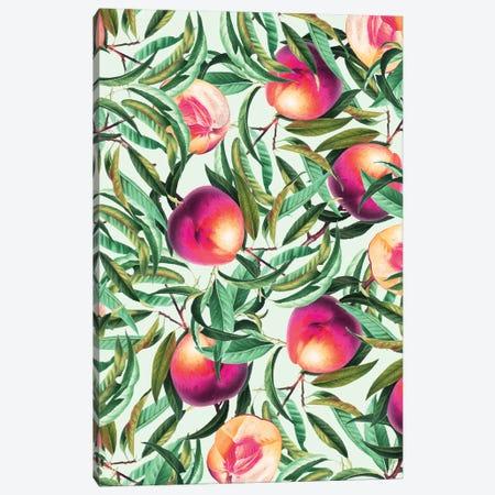 Sweet Peaches Canvas Print #UMA1007} by 83 Oranges Canvas Artwork