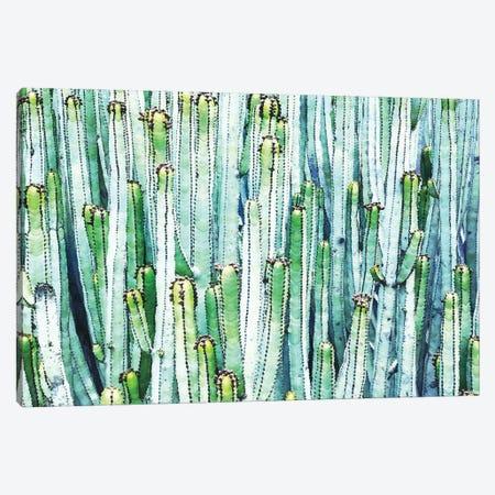Lost Cactus Canvas Print #UMA1015} by 83 Oranges Art Print