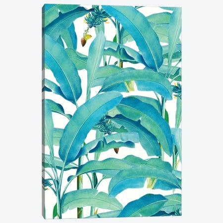 Banana Forest Canvas Print #UMA1020} by 83 Oranges Canvas Art Print