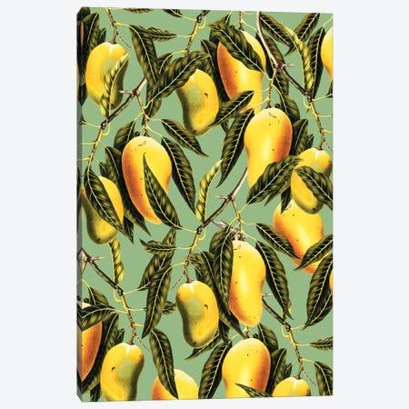 Mango Season Canvas Print #UMA1024} by 83 Oranges Canvas Artwork