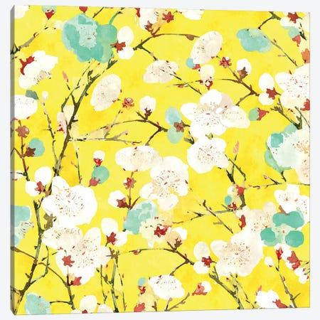 Cherry Blossom Canvas Print #UMA1117} by 83 Oranges Canvas Art