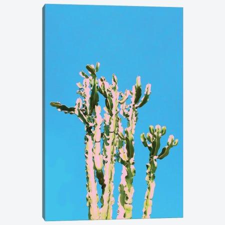 Cactus Beauty Canvas Print #UMA1164} by 83 Oranges Canvas Print