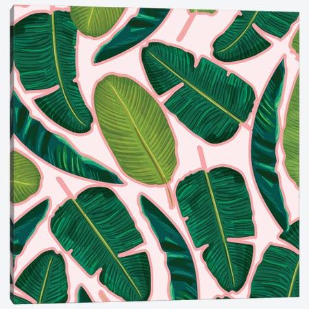 Banana Leaf Blush Canvas Print #UMA1178} by 83 Oranges Art Print