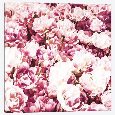 Pink Mood Canvas Print #UMA117} by 83 Oranges Canvas Artwork
