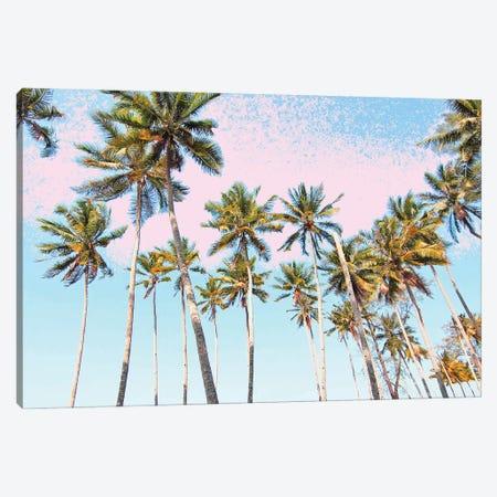 Coconut Palms Canvas Print #UMA1248} by 83 Oranges Canvas Art Print