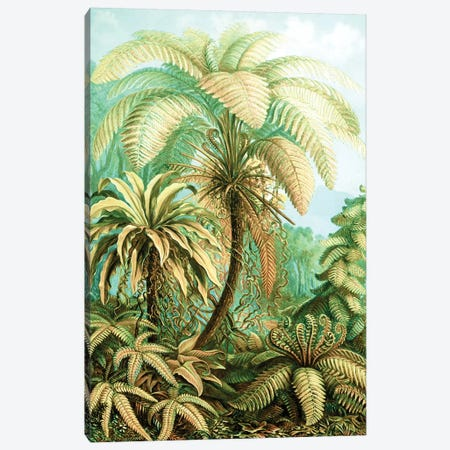 Vintage Tropical Canvas Print #UMA126} by 83 Oranges Art Print