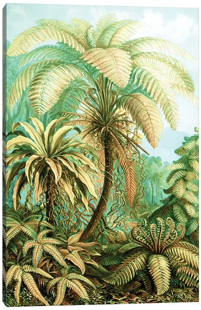 Vintage Tropical Canvas Art Print