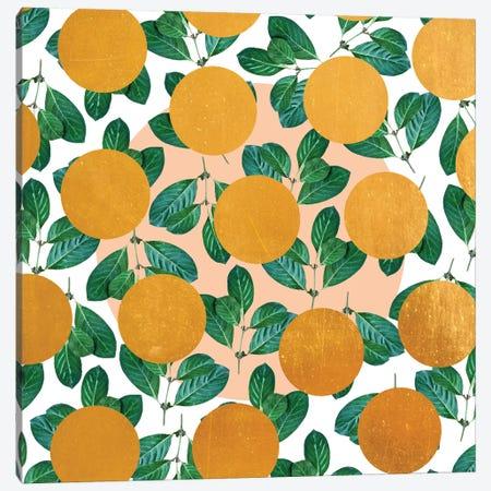 Beverly Canvas Print #UMA12} by 83 Oranges Canvas Art