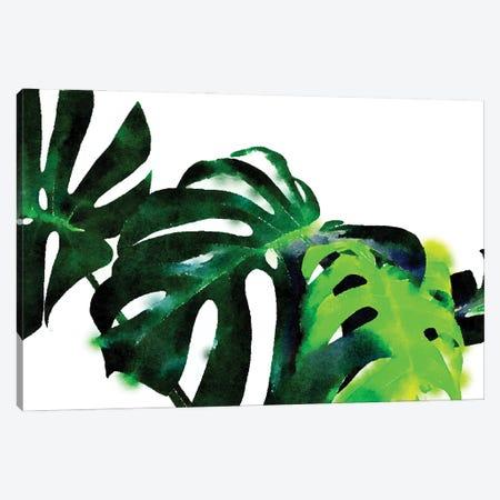 Fresh Leaves Canvas Print #UMA1334} by 83 Oranges Canvas Art