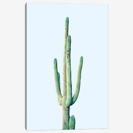 Loner Cactus Canvas Print #UMA1346} by 83 Oranges Canvas Print