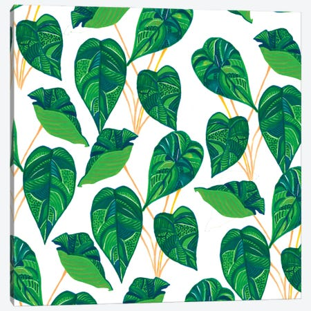 House Plant Canvas Print #UMA1352} by 83 Oranges Canvas Art Print