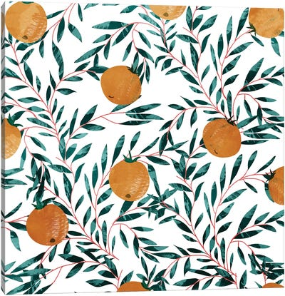 Mandarins Canvas Art Print