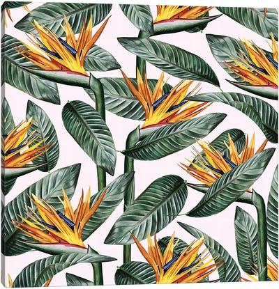 Bird Of Paradise Leaf Canvas Art Print