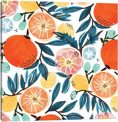 Fruit Shower Canvas Art Print