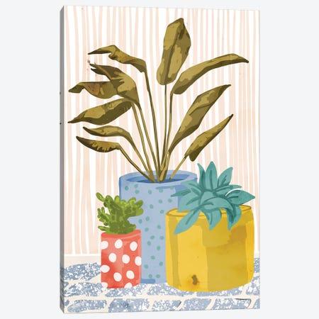 Little Garden II Canvas Print #UMA142} by 83 Oranges Canvas Art