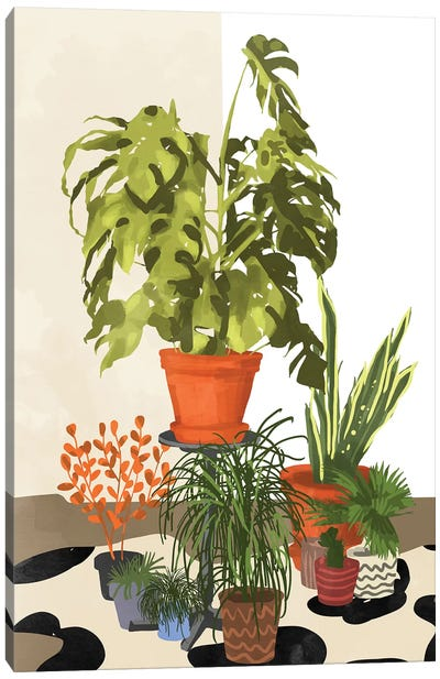 Plant Pots Canvas Art Print