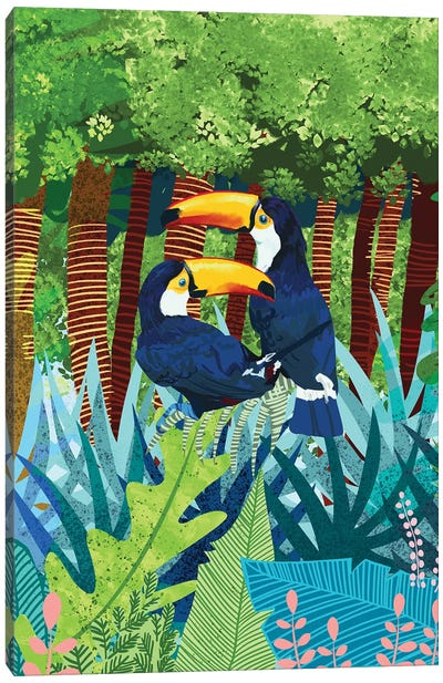 Toucans Canvas Art Print
