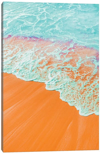 Coral Shore Canvas Art Print