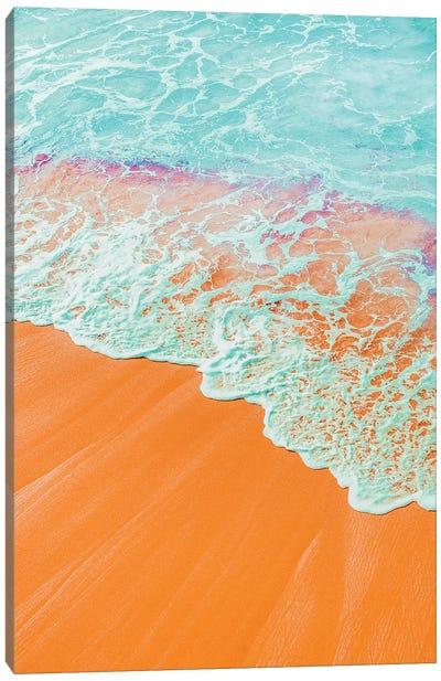 Coral Shore Canvas Art Print