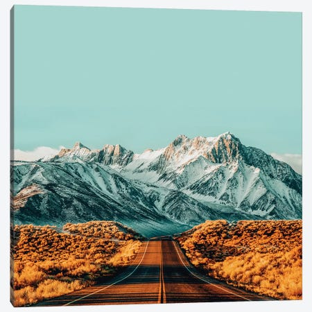 The Road Less Traveled Canvas Print #UMA185} by 83 Oranges Canvas Print