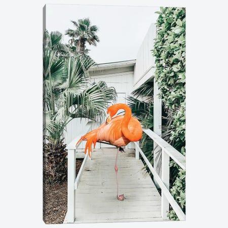 Flamingo Beach House Canvas Print #UMA202} by 83 Oranges Art Print