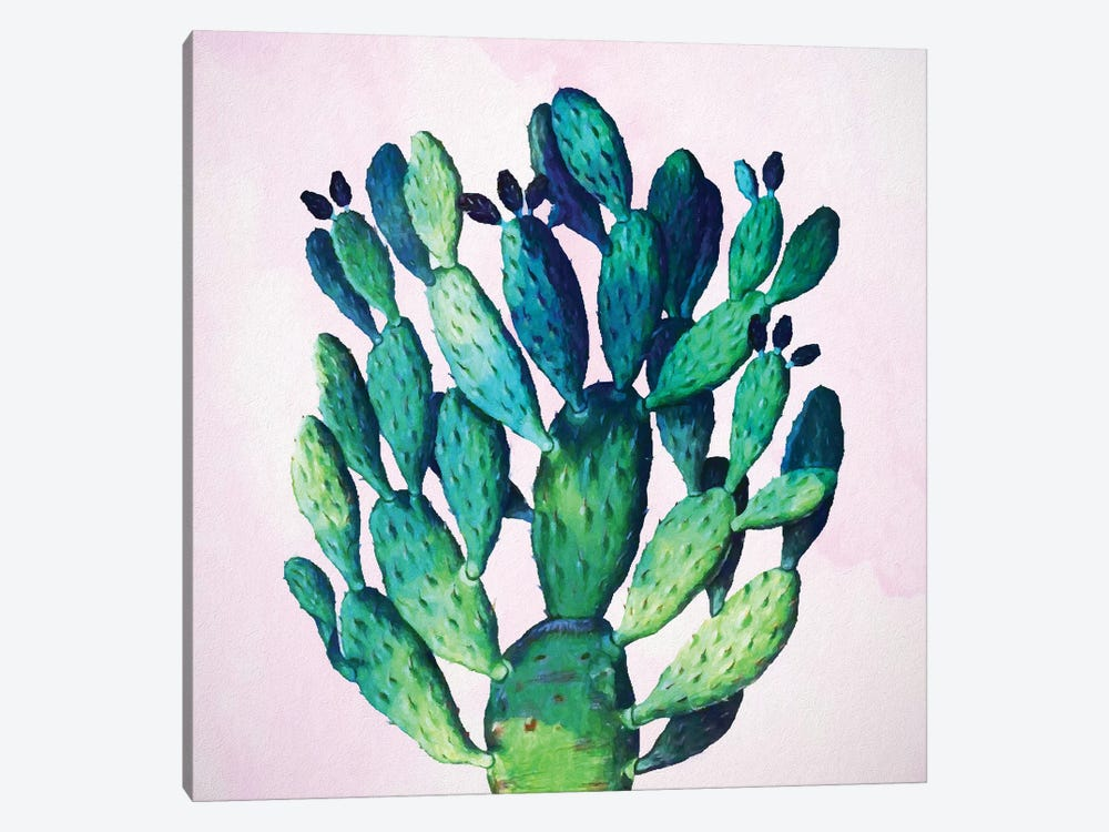 Cactus Plant by 83 Oranges 1-piece Canvas Print