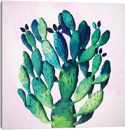 Cactus Plant Canvas Art Print
