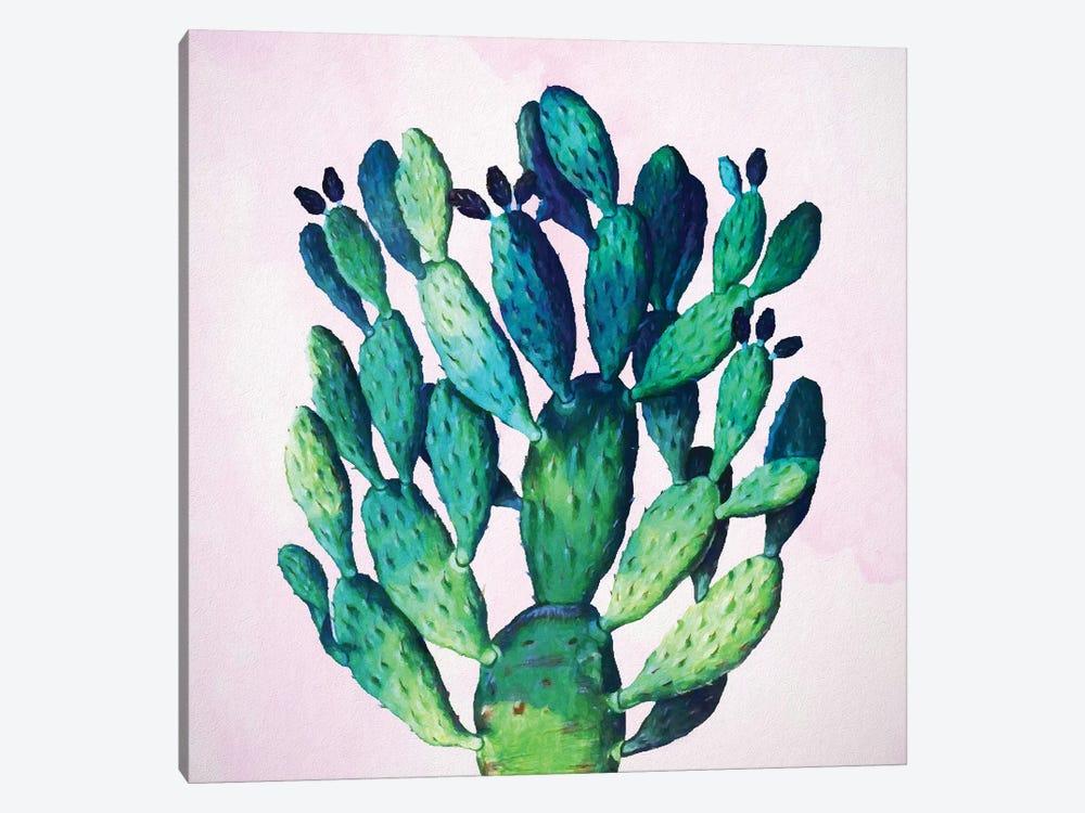 Cactus Plant by 83 Oranges 1-piece Canvas Print