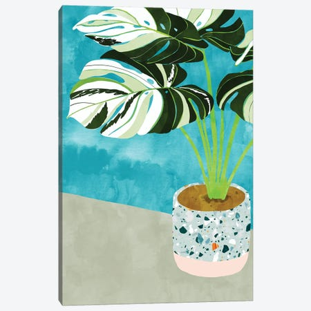 Variegated Monstera Canvas Print #UMA214} by 83 Oranges Art Print