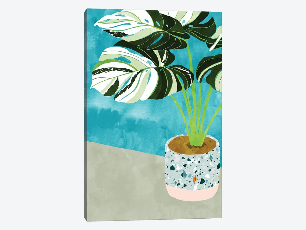 Variegated Monstera by 83 Oranges 1-piece Canvas Artwork