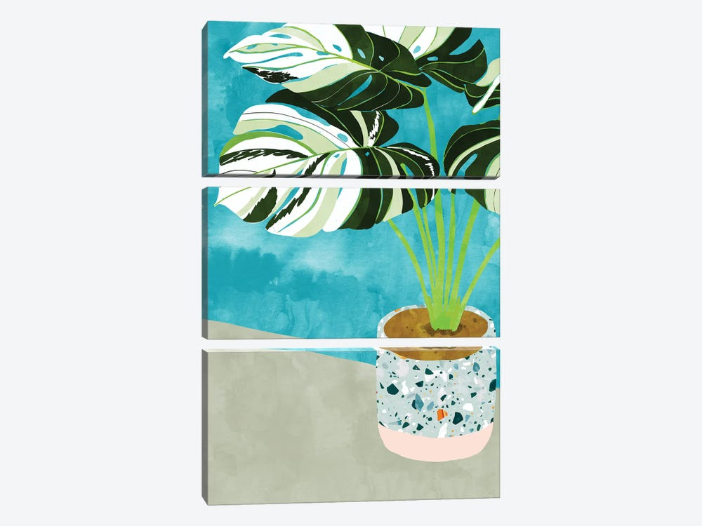 Variegated Monstera by 83 Oranges 3-piece Canvas Art