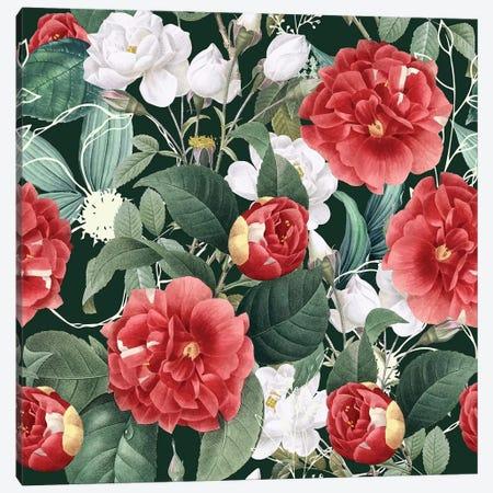 Botanical Wonder Canvas Print #UMA223} by 83 Oranges Canvas Art Print