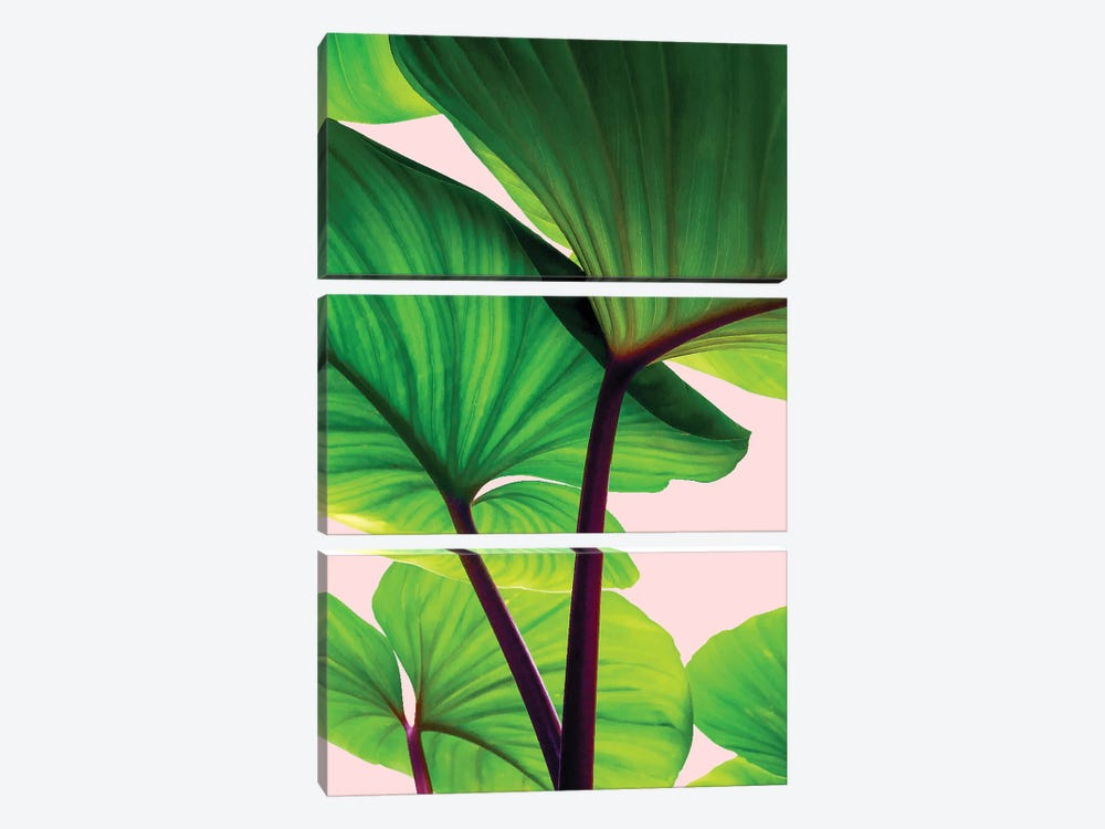 Charming Sequence by 83 Oranges 3-piece Canvas Art