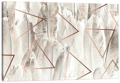 Copper Feathers Canvas Art Print