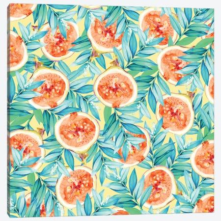 Figs  Canvas Print #UMA29} by 83 Oranges Canvas Print