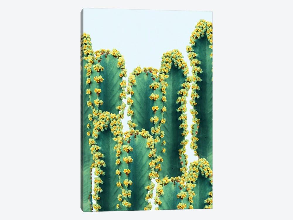 Adorned Cactus by 83 Oranges 1-piece Canvas Art Print